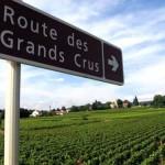 Francia-Ruta-de-los-Vinos